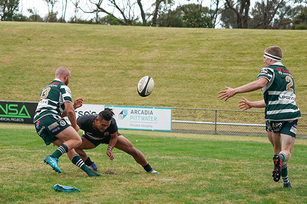 Warringah Rugby Club May 2019